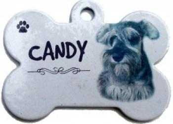 placa de identificación perro