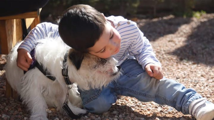 Charla sobre perros de alerta médica en Madrid, 19/06/2019.