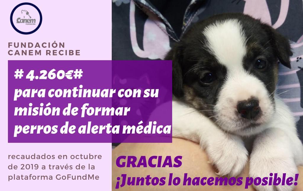 Éxito de recaudación de la campaña «Consigamos un perro de alerta médica para Lorenzo»