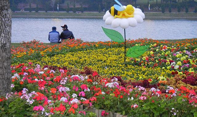 Festival hoa Đà Lạt - Đà Lạt luôn được ví là thành phố của ngàn hoa