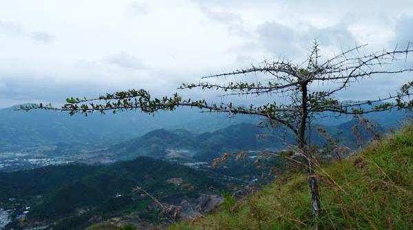 Từ trên đỉnh núi Cô Tiên có thể phóng tầm mắt ngắm toàn cảnh thành phố và Vịnh Nha Trang xinh đẹp