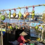Tour Miền Tây 1 Ngày – Chợ Nổi Cái Bè – Vĩnh Long