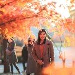 Gợi ý tự xin visa đi du lịch Hàn Quốc