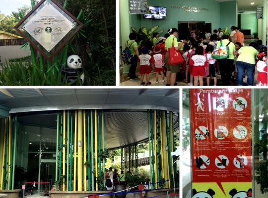 Giant Panda Conservation centre