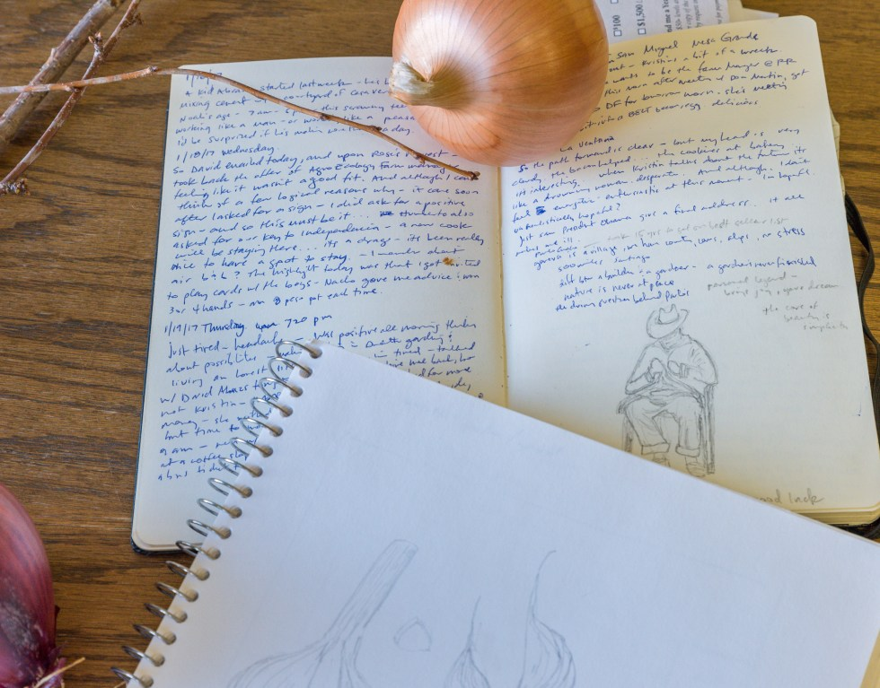 Nature Journaling with the Duluth Folk School