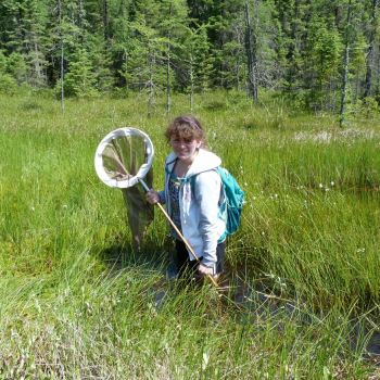 Dragonfly hunting in waders