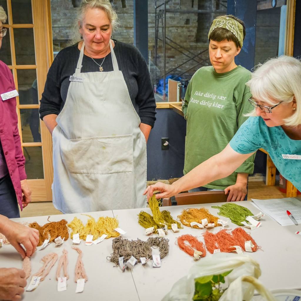 Natural Dyes Class
