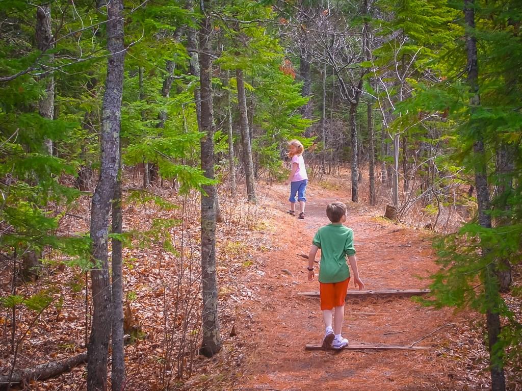 Duluth Folk School Art & Nature Camp