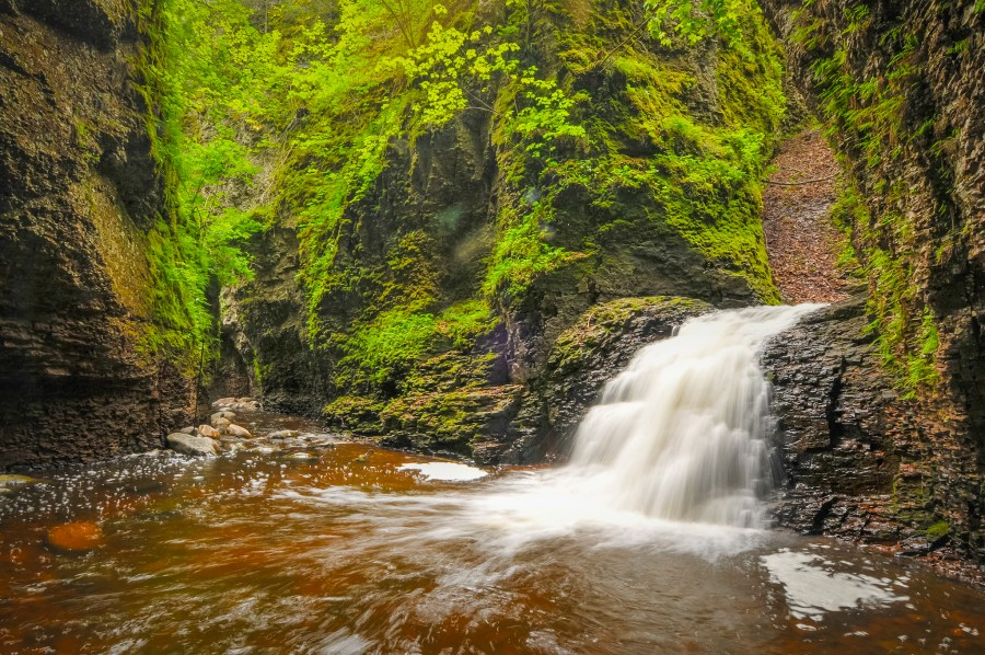Mastering Nature Photography at the Duluth Folk School