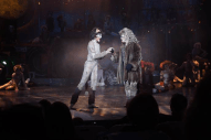 The Duluth Playhouse Children's Theatre Series production of CATS