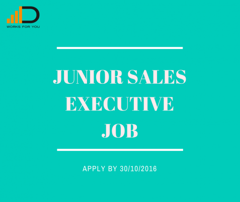 Apply for the Junior Sales Executive for a chance to advance in your career!