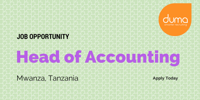 Job Application for the Head of Accounting