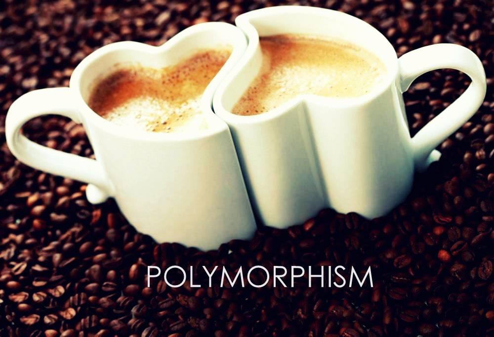 Java Polymorphism   Polymorphism Java Example   Dumb IT Dude