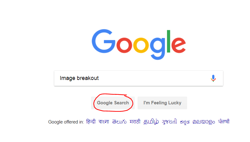 type image breakout and then click on google search button