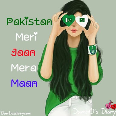 Pakistan Day girly DP with status