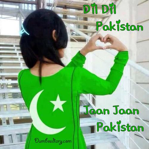 Pakistan independence Day status