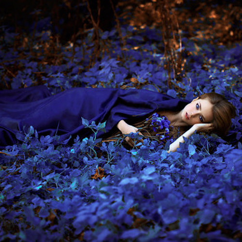 girl-lying-on-blue-flowers