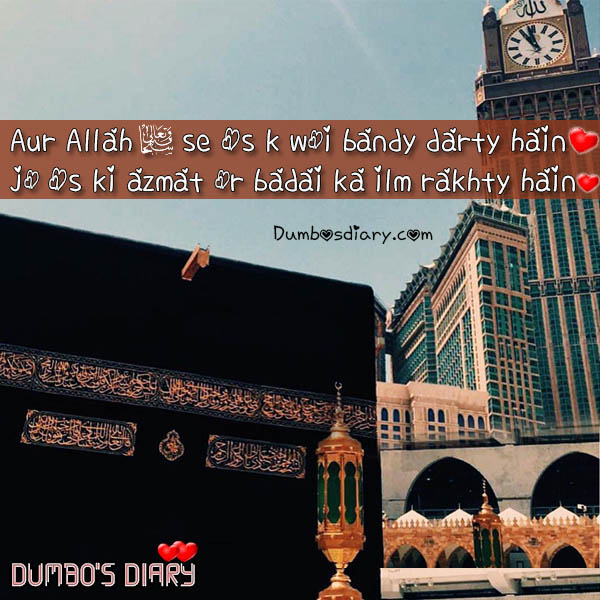 Islamic Short Quotes