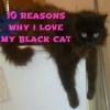 10 reasons why i love my black cat