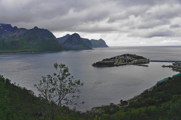Island of Husoy, in Oyfjorden, Island of Senja, Troms og Finnmark, Norway - ...behind every picture, there is a story...