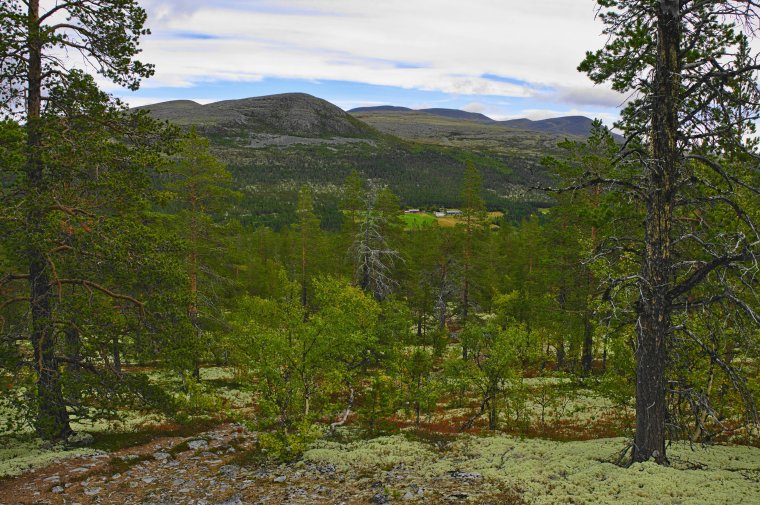 Rondane National Park, Innlandet County, Norway - ...behind every picture, there is a story...