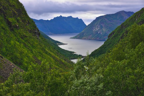Sifjord, Island of Senja, Troms og Finnmark, Norway - ...behind every picture, there is a story...