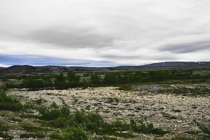 Tundra between Lakselv and Kunes, Troms og Finnmark, Norway - ...behind every picture, there is a story...