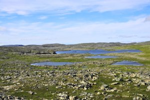 Tundra south of Mehamn, Nordkinn Peninsula, Troms og Finnmark, Norway - ...behind every picture, there is a story...