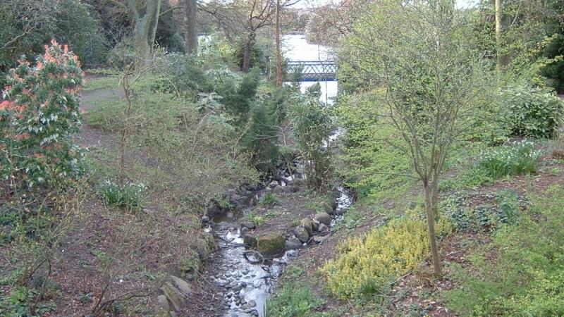 Old Photos From Longton Park [APRIL 2005]
