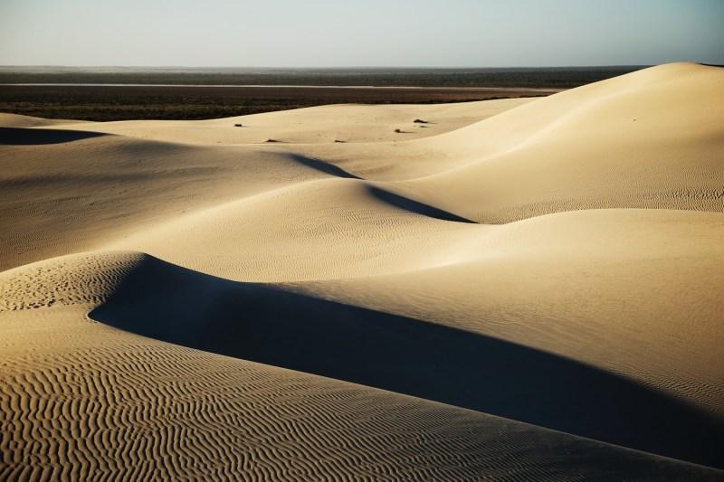 Duncanm, Duncan Macfarlane, Desert, Dunes, Sand dunes, Landscape, South Australia, Australia, Realaxe, Photography,