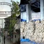 না'গঞ্জে গোডাউনে ৭০০ কোটি টাকার পাট অবিক্রিত