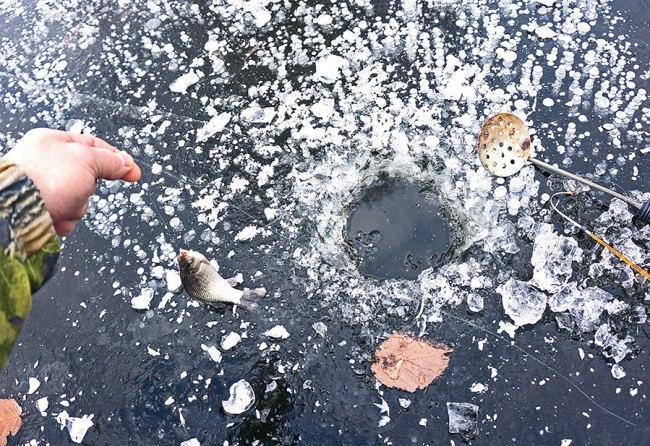 карась по первому льду