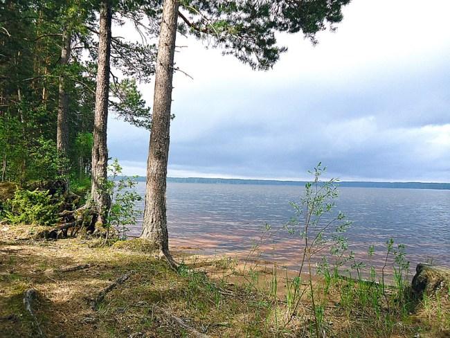 берег озера Волго