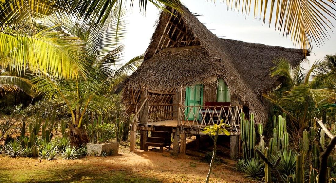 Dune eco village & spa - dune_hotel_eco_rooms_baywatch_9 - 1755