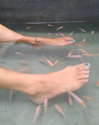 Fish Therapy at Turtle Eco Beach Spa