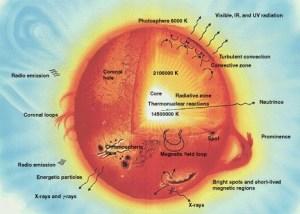 Diagram penampang Matahari (Sumber: wikipedia)