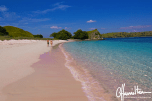 Pink beach at Komodo island in Indonesia