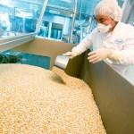 Tumbuh di Atas 9%, Industri Farmasi dan Kimia Jadi Prioritas Program Substitusi Impor