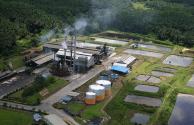 Dinilai Urgent, Pemerintah Pangkas Pungutan Ekspor CPO Jadi US$ 0/Ton
