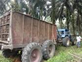 Kinerja Ekspor Makin Kuat, Sektor Agro Sumbang 28,24% dari Ekspor Nasional