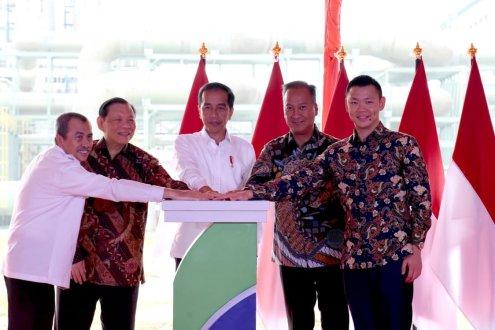 Geliat Bisnis Group RGE, Pabrik Baru Asia Pacific Rayon Telan Investasi Rp 15 Triliun