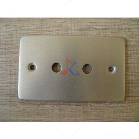 Dual Terminal Wall Plate for Phono Connectors