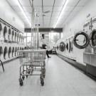 franchise laundry koin