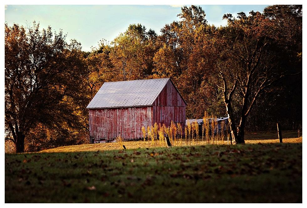 calvert county photographer (17)