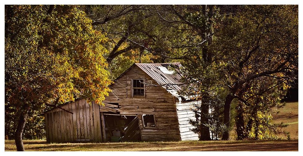 calvert county photos (24)