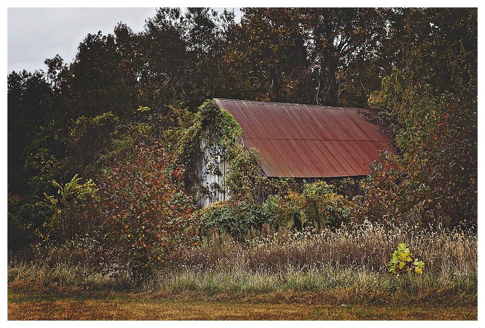 calvert county photos (26)