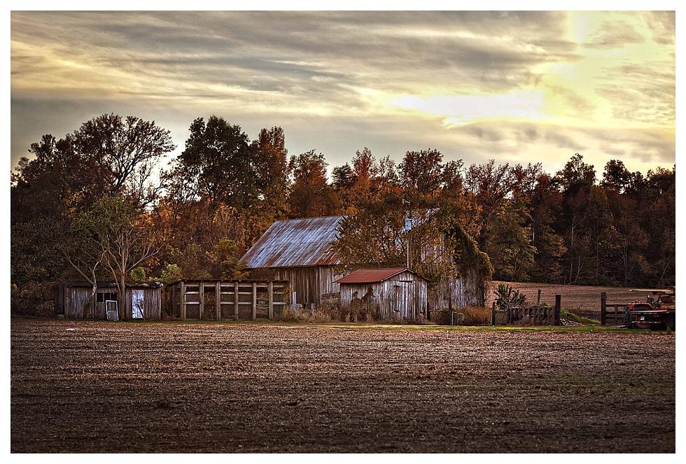 calvert county photos (28)