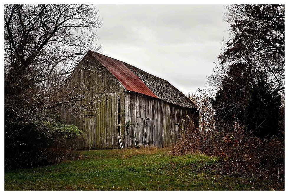 calvert county photographer (36)