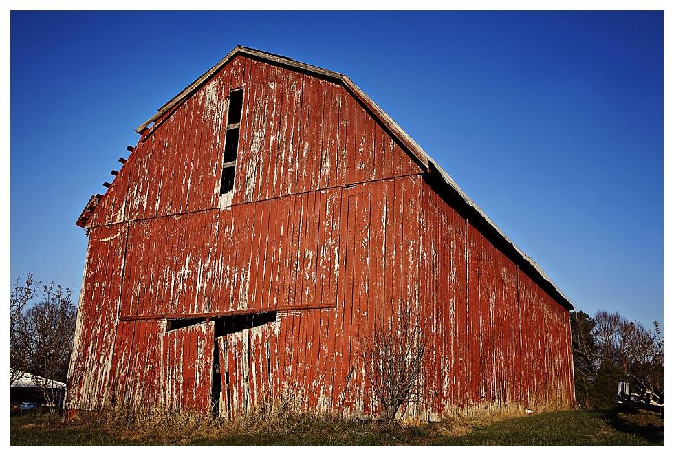 calvert county photographers (6)
