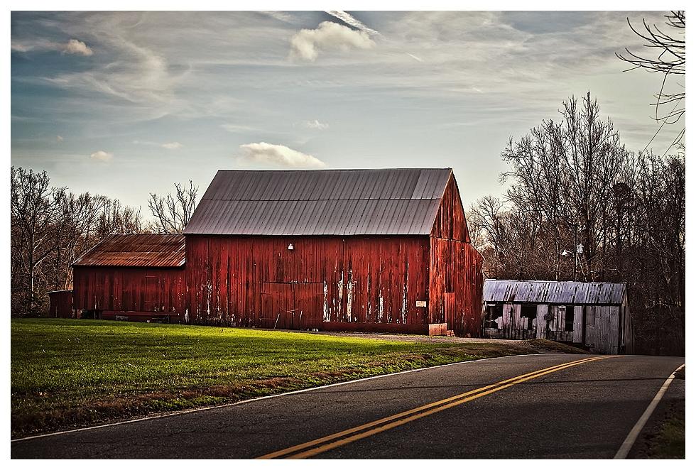 calvert county photos (8)
